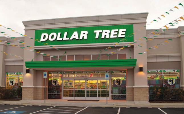 dollar tree annual report
